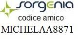codice amico Michela MICHELAA8871